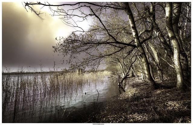 Au bord du lac .../ On the edge of the lake ...