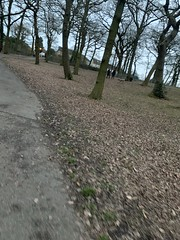 Photo collection-Grangewood park no. 23 and 24