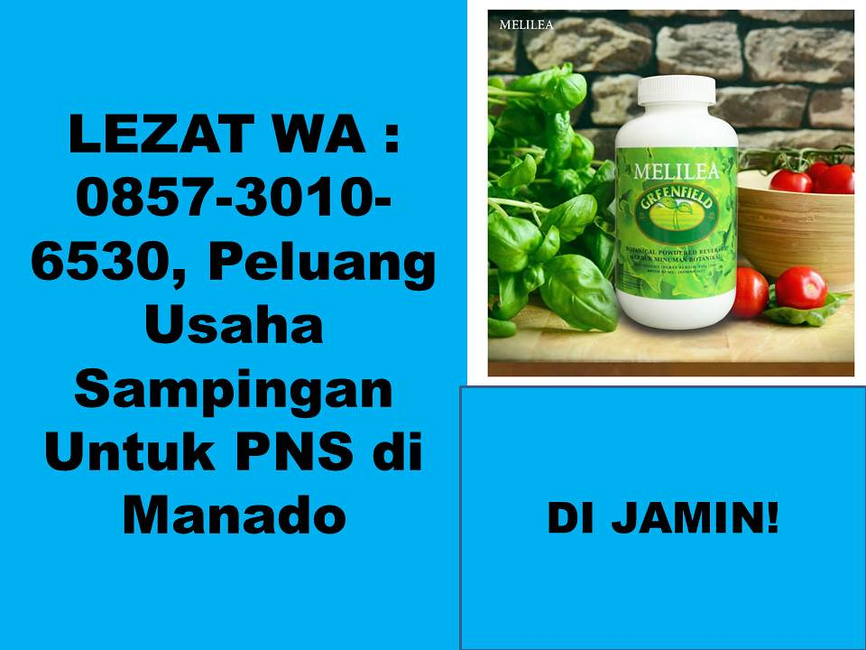 LEZAT WA  0857-3010-6530, Peluang Usaha Sampingan Untuk PNS di Manado