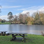 Picnic benches by the lake at Haslam Park