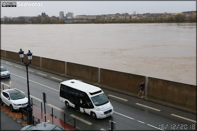 Dietrich Véhicules City 21 (Fiat Ducato) – SARL Evadys / TBM (Transports Bordeaux Métropole)