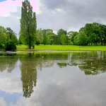 Haslam Park lake reflection