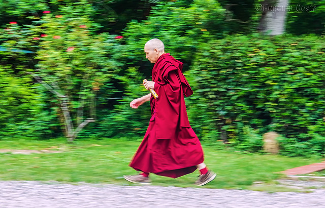 the monk is in a hurry