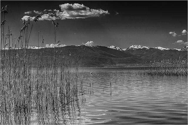 Lake Ohrid #10