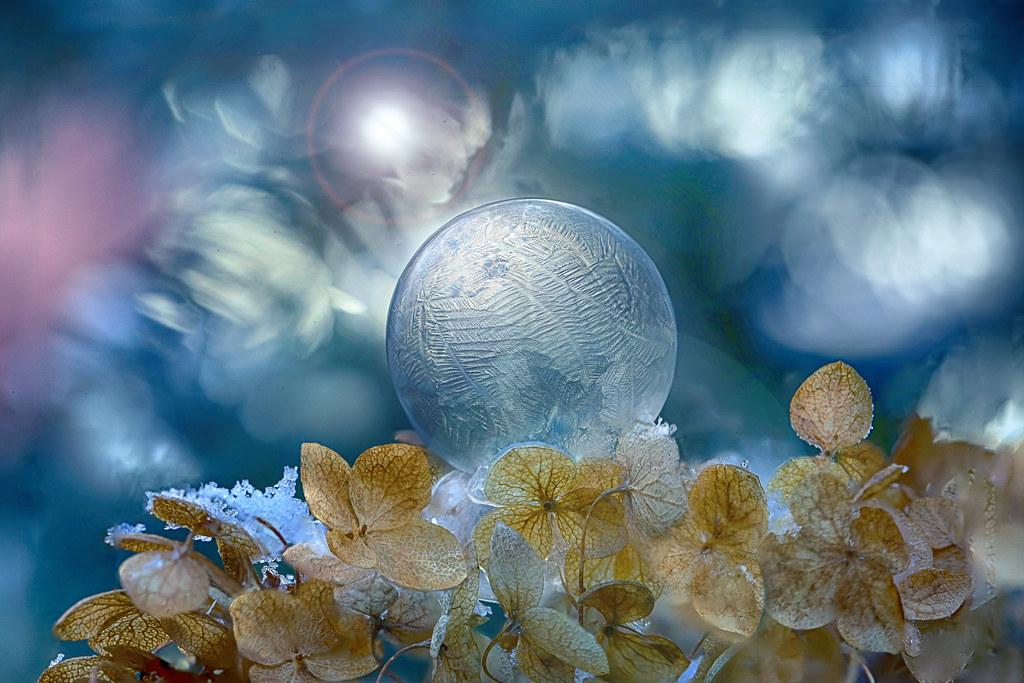 Crystalline Charm