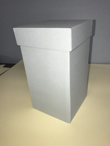 1966 WFU Football box