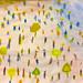 se7en-25-Feb-21-IMG_8275