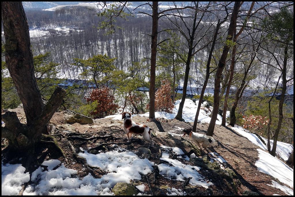 2-24-21 - Joy on the mountain