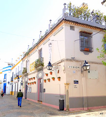 La Juderia, barrio de Córdoba.