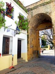 Puertas y fachadas de Córdoba.