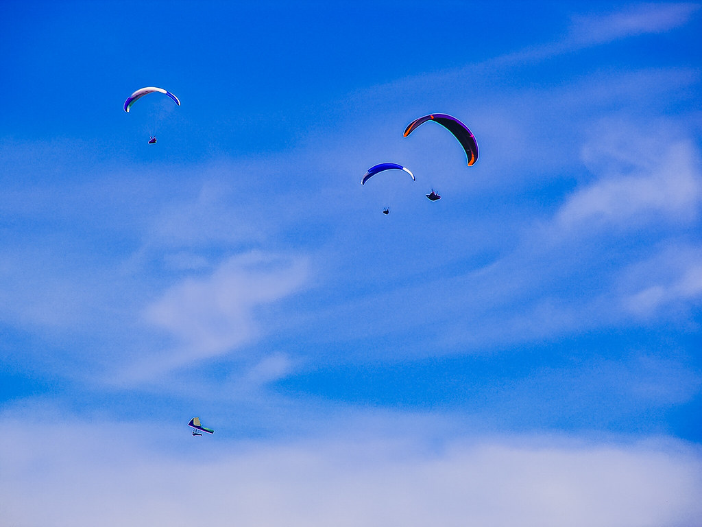 PICT1435 Paragliders
