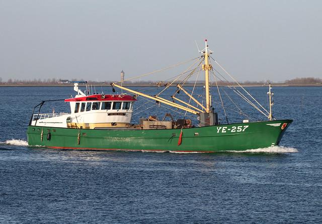 YE-257 - YERSEKE