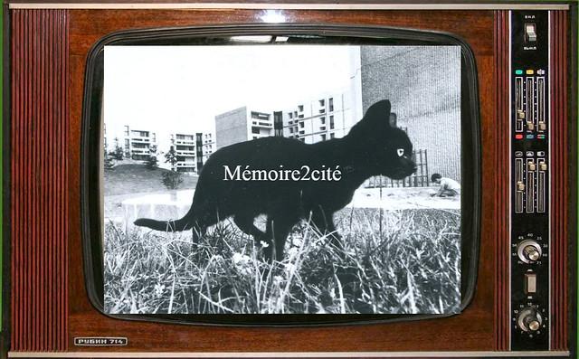 logo tv Mémoire2cité Mémoire2cité Vol 137
