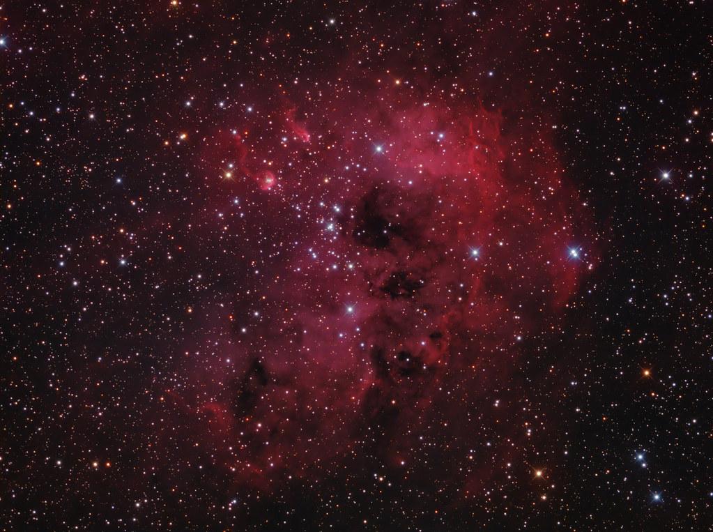 IC 410, The Tadpole Nebula