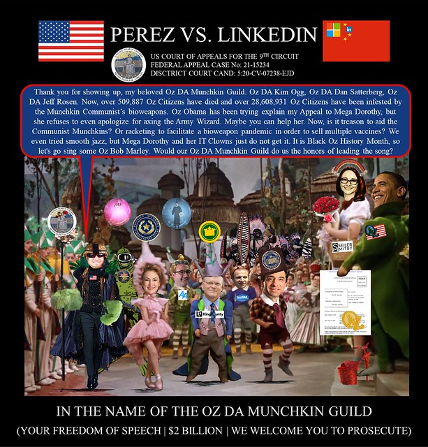 67 Alejandro Evaristo Perez vs Linkedin Corporation - US Federal Court Case -  The Army Wizard of OZ - $2BN In the Name of the OZ DA Munchkin Guild