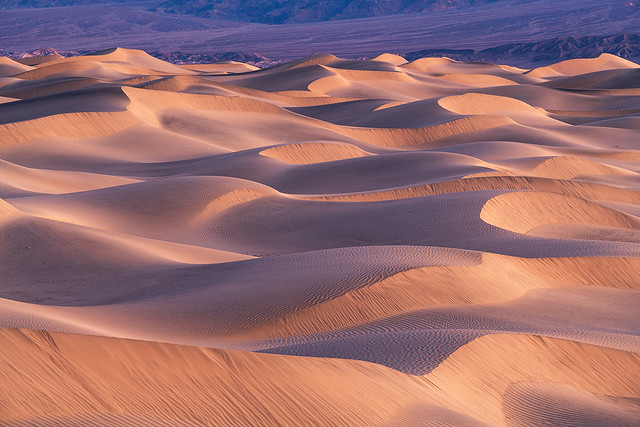Mesquite Flat Dunes, Death Valley CA