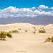 Death Valley VII, CALIFORNIA, COSTA OESTE.