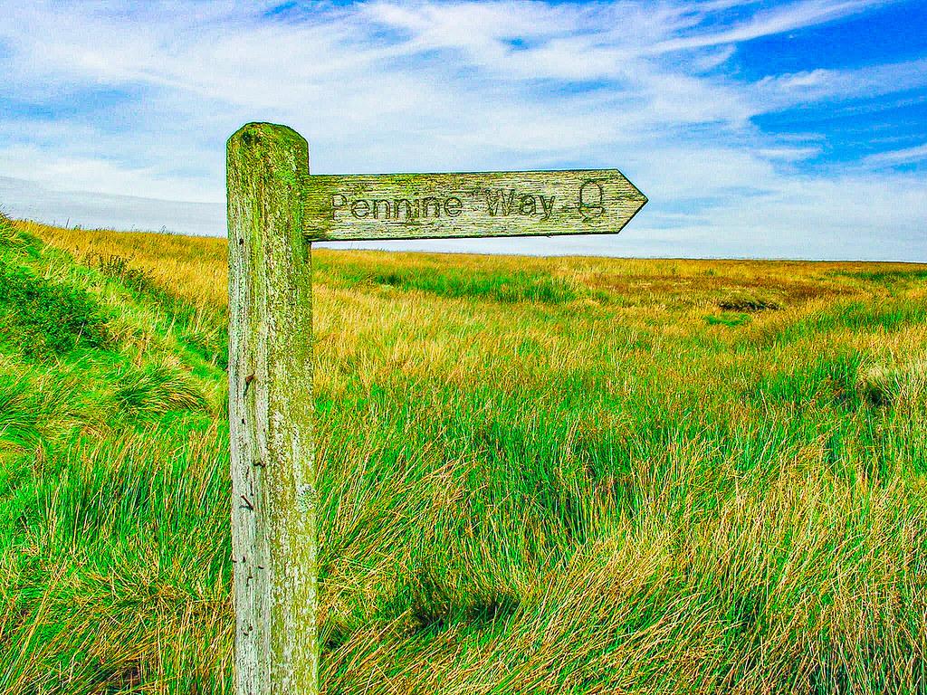 PICT1436 Pennine Way, Little Moss