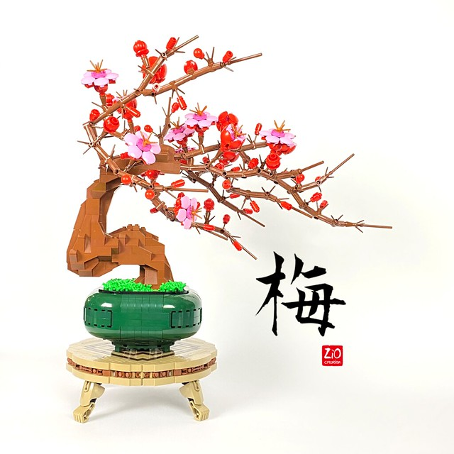 Bonsai of Plum Blossom