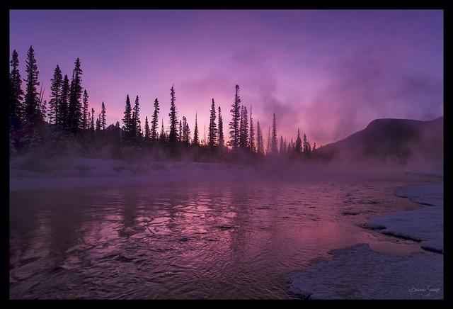 Bow River Steam Sunrise