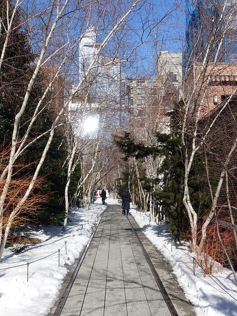 202102220 New York City Chelsea High Line Park