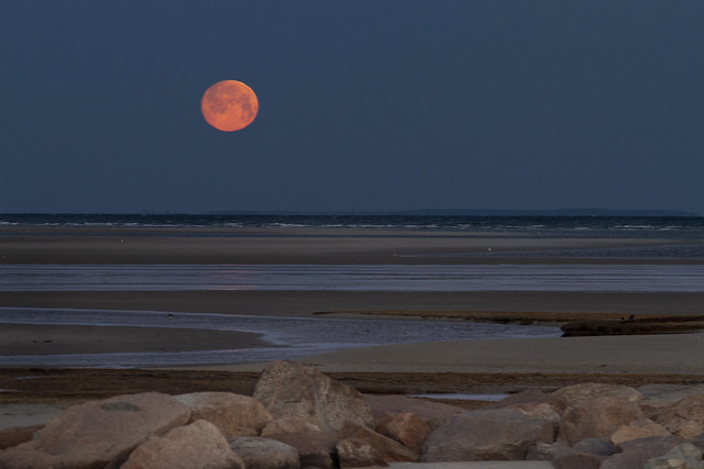 Low Tide Moonset Over The Bar