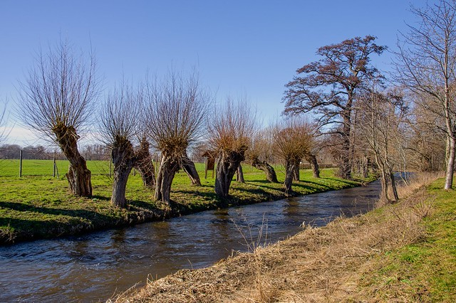 Spring-like weather at the Holtemme near Derenburg