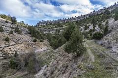CabrejasDelPinar-NacimientoRioCabrejas-MiradorDeMaldifrades-ElChorrón_9779