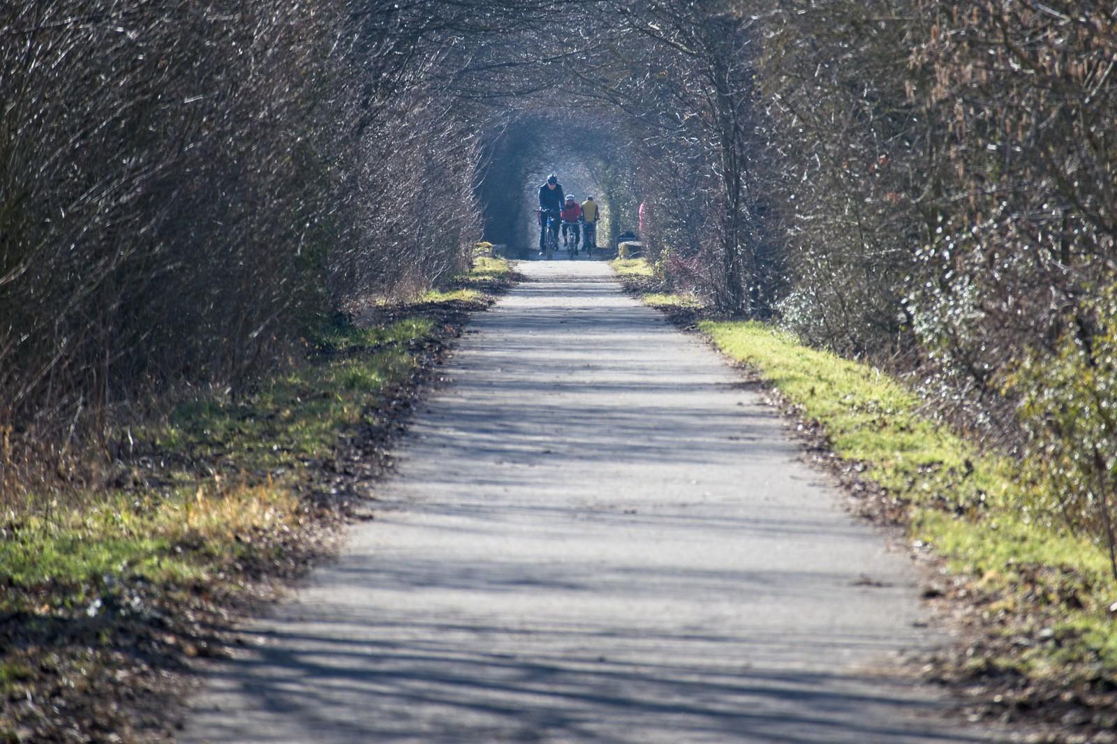 """Fuß- und Radweg (""""Amiche"""") zwischen Mommenheim und Selzen"""
