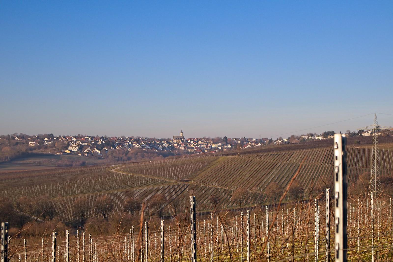 Blick nach Zornheim