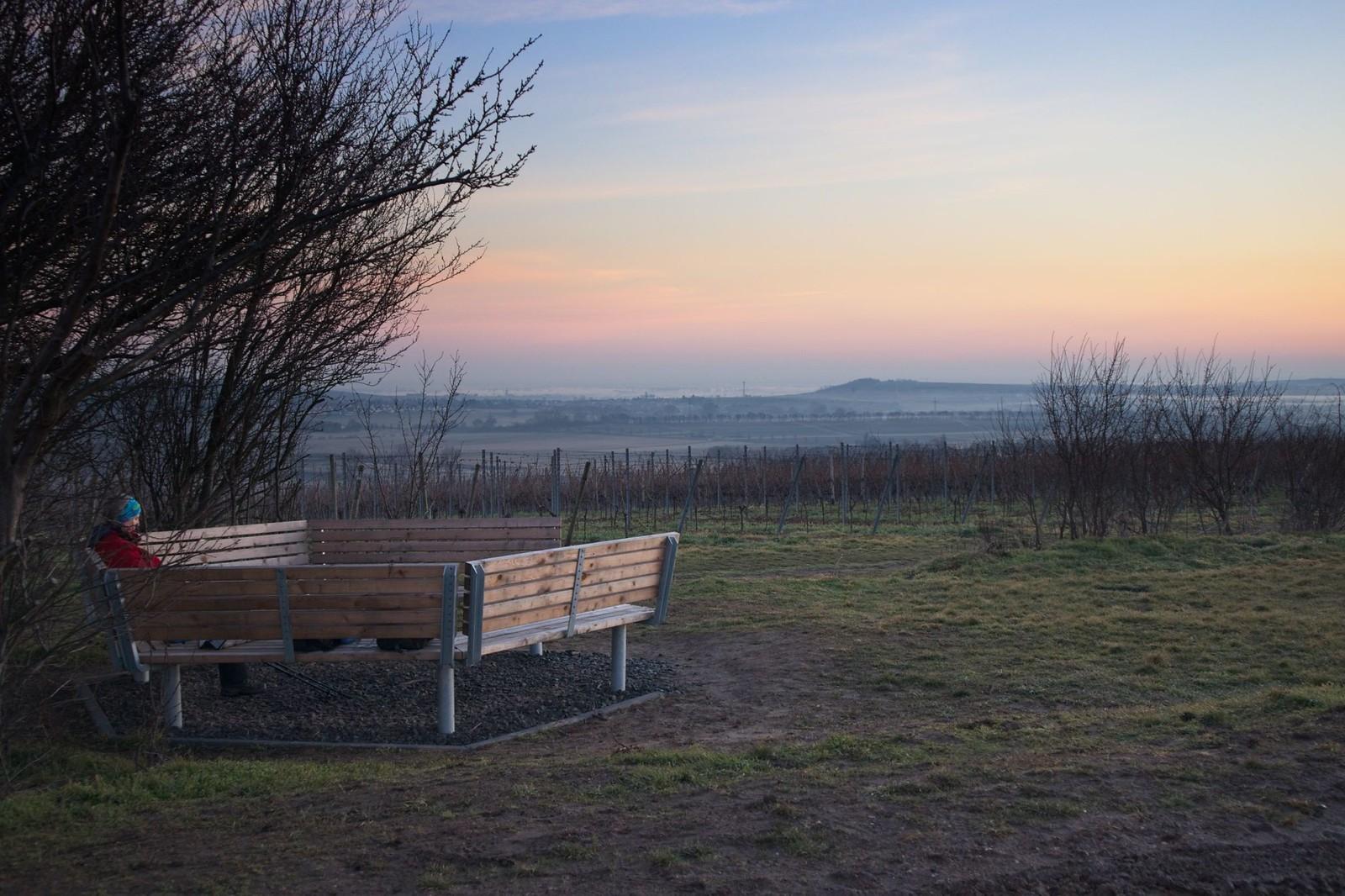 Morgendämmerung am Wingertshäuschen auf dem Winkel (Zornheim) von Selzen zum Lörzweiler Kreuz mit Sonnenaufgang am Wingertshäuschen auf dem Winkel
