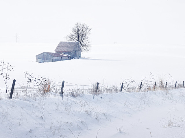 Country Snowscape HFF