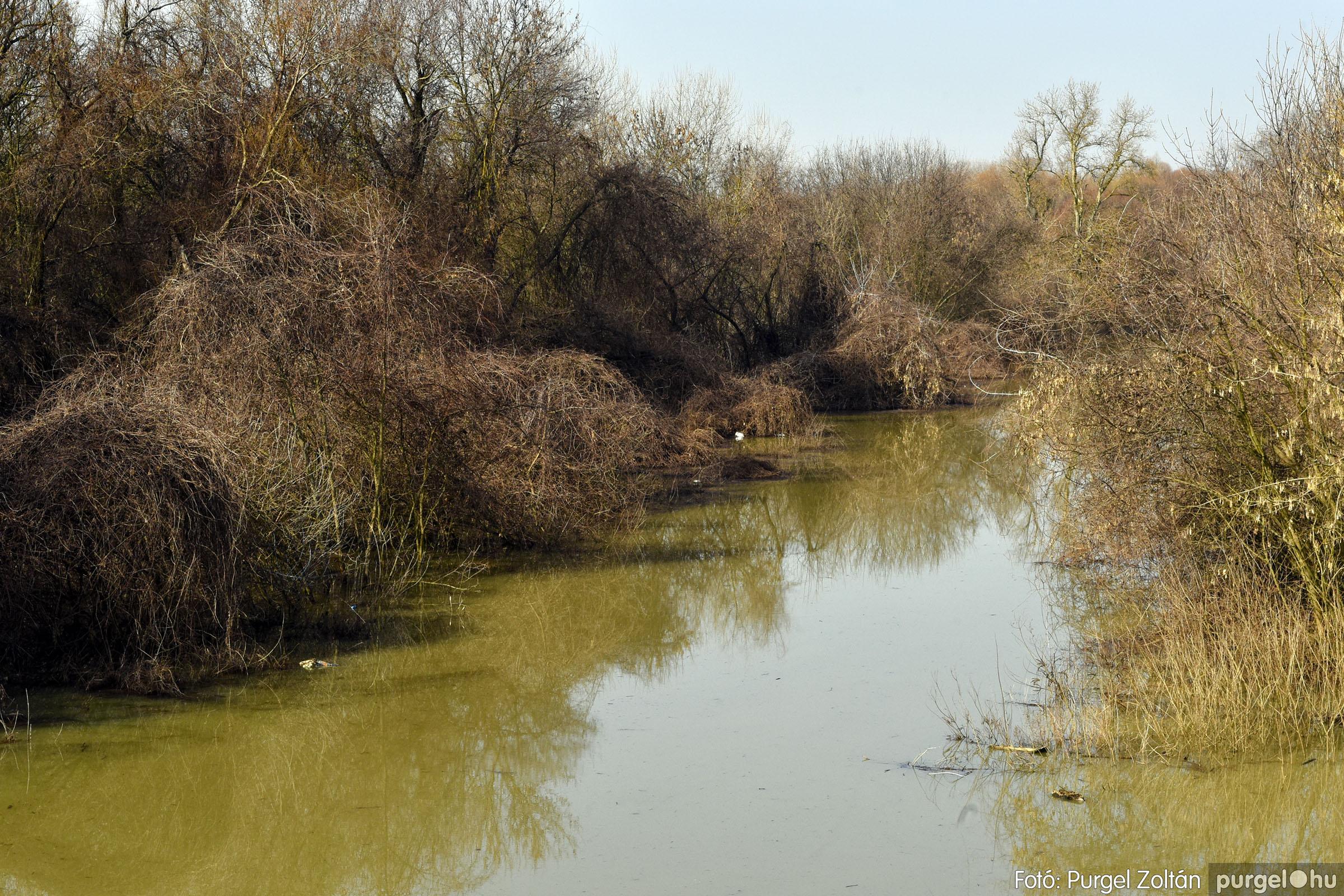 2021.02.26. 012 Tisza áradás - Fotók:PURGEL ZOLTÁN© _DSC3847q.jpg