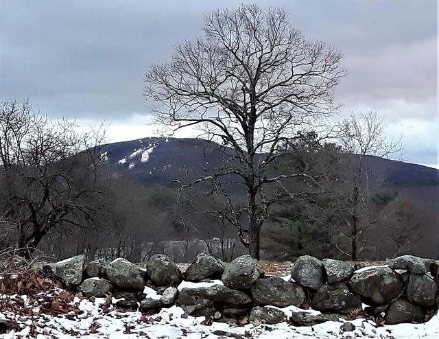 Mount Wachusett winter view