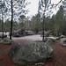 "<p><a href=""https://www.flickr.com/people/113917182@N04/"">EPJT</a> posted a photo:</p>  <p><a href=""https://www.flickr.com/photos/113917182@N04/50982305956/"" title=""Escalade de bloc dans la forêt de Fontainebleau""><img src=""https://live.staticflickr.com/65535/50982305956_47da051d8f_m.jpg"" width=""240"" height=""160"" alt=""Escalade de bloc dans la forêt de Fontainebleau"" /></a></p>  <p>Escalade de bloc dans la forêt de Fontainebleau</p>"