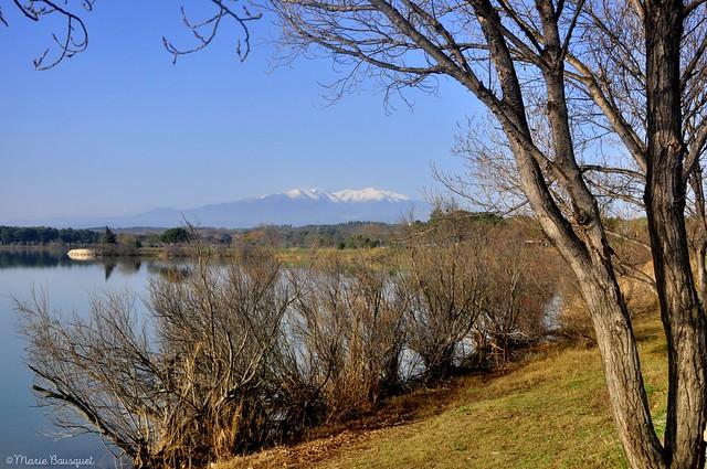 Les rives du lac de Villeneuve-de-la-Raho et le Canigou