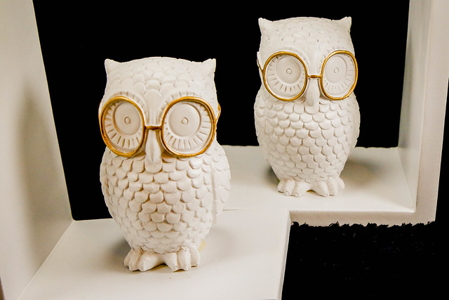 2.26.2021_owl_bookends.03