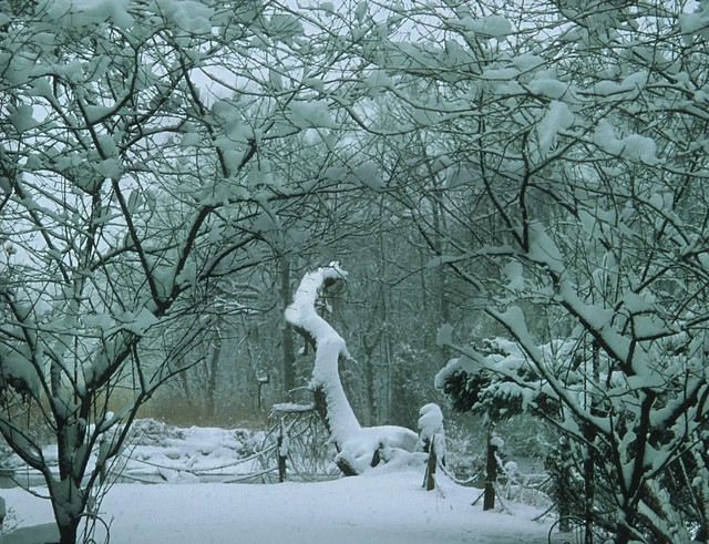 Suburban Snow Scene 105