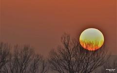 Certi tramonti scatto cover