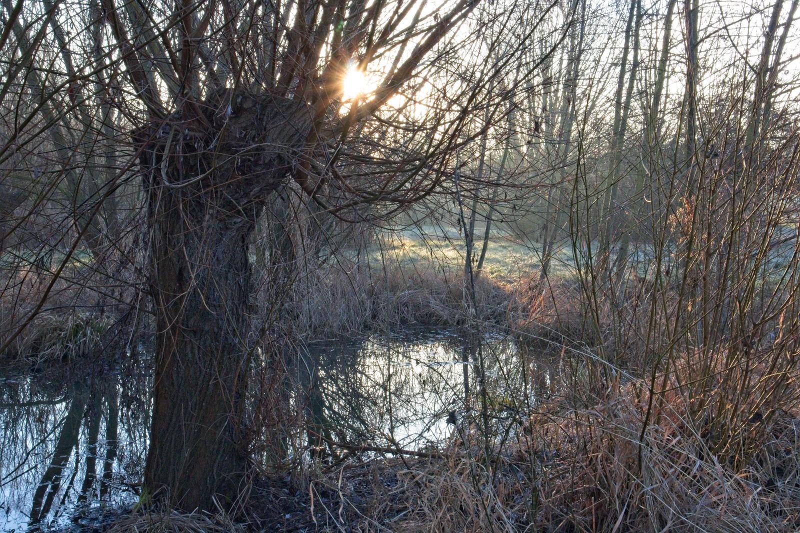 SunriseHike von Selzen zum Lörzweiler Kreuz mit Sonnenaufgang am Wingertshäuschen auf dem Winkel
