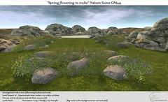 ".:Tm:.Creation ""Spring flowering in rocks"" Nature Scene GM49"