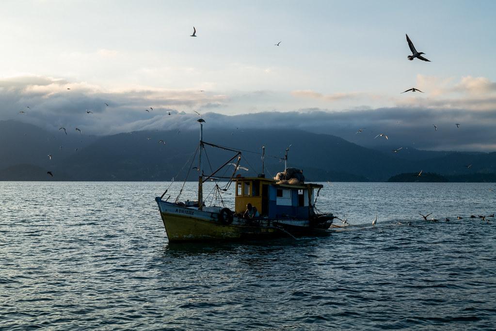 """""""Pescador com amigos"""" Paraty, RJ, Brasil"""