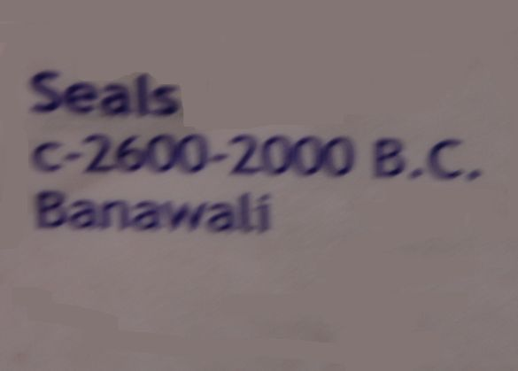 DSC_2771SealsCirca2600-20000BCBanawali