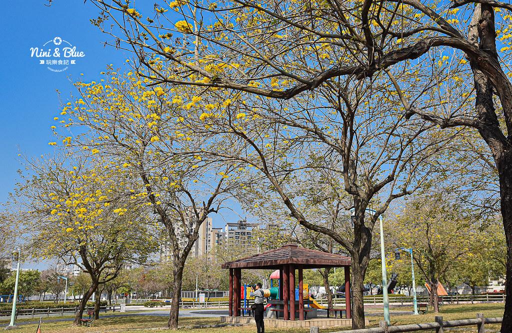 部子公園 台中黃金風鈴木27