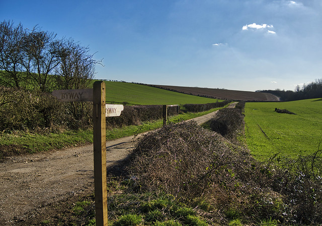 Byway, Worthy Down, Hampshire