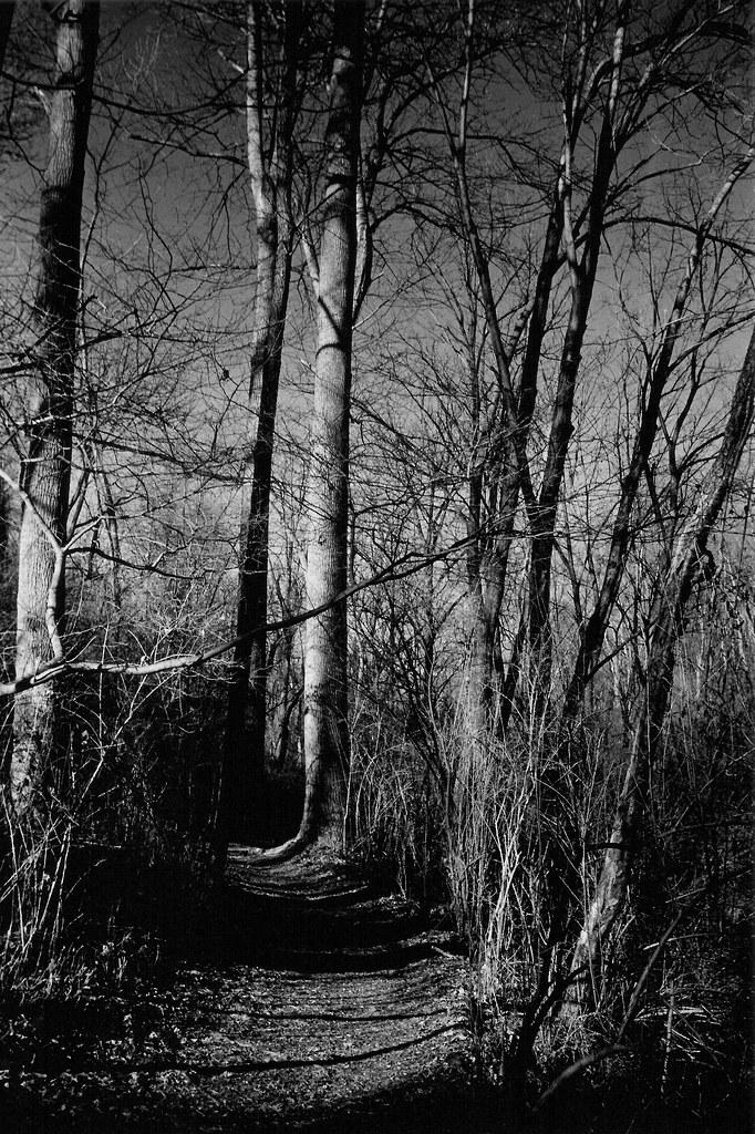 Richard M. Nixon Park