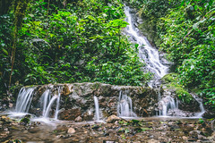 A beautiful corner at the Santuario de las cascadas