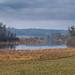 CH AG am Flachsee - Reuss Auen Landschaft bei Hermetschwil