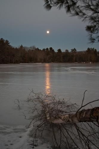 reflection moon tree pond ice snow frozen stearnspond haroldparker massachusetts park nature light landscape sky frontbokeh evening night stream