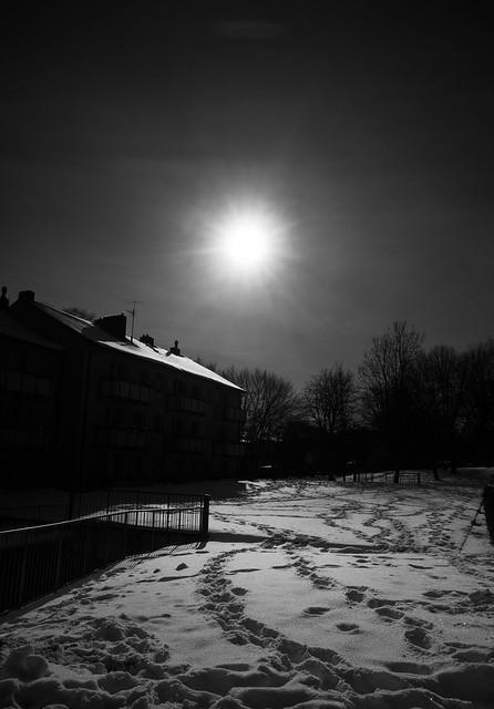 Winter Sun IV